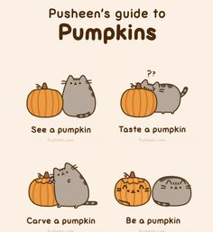 Love Pusheen the Cat!