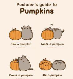 Love Pusheen the Cat!