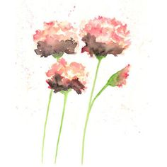 Best Watercolor Painting Of Flowers Products on Wanelo