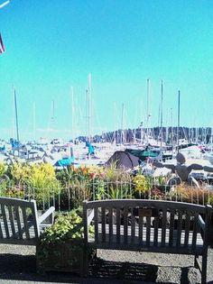 Doc's Marina Grill, Bainbridge Island: See 374 unbiased reviews of Doc's Marina Grill, rated 3.5 of 5 on TripAdvisor and ranked #9 of 64 restaurants in Bainbridge Island.