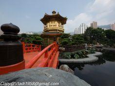 Oasis in HK