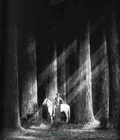 Fritz Lang, Die Nibelungen, 1924