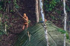 RICARDO STUCKERT - An isolated tribesman in the remote jungles of Brazil prepares to launch an arrow at a low-flying helicopter last week