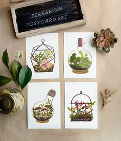 Terrarium Postcard SET 4pcs by QuillandFox on Etsy, $7.00