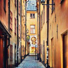 Stockholm #cabinmax http://cabinmax.com/en/trolleys/52-stockholm-0616983191729.html