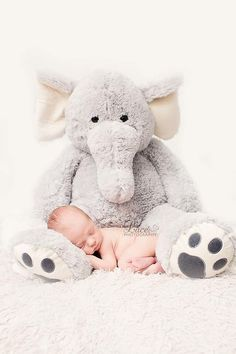 Baby photography of your newborn with an elephant. Newborn Fotografia, Foto Newborn, Newborn Baby Photos, Baby Boy Photos, Baby Poses, Newborn Poses, Newborn Baby Photography, Newborn Pictures, Newborn Session