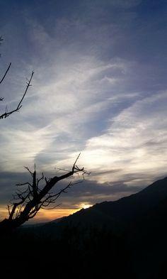 Sierra de San Vicente (Toledo) - Photo Fantasy. El árbol que miraba al Pico de San Vicente...