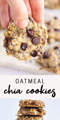 Oatmeal Chia Cookies – These oatmeal chia cookies are perfect for breakfast or as a healthy snack. The texture is chewy an – Oatmeal Chia Cookies – These oatmeal chia cookies are perfect for breakfast or as a healthy snack. The texture is chewy an – Healthy Cookies, Healthy Sweets, Healthy Breakfast Cookies, Banana Breakfast Recipes, Oatmeal Breakfast Cookies, Healthy Banana Muffins, Healthy Chocolate Chip Cookies, Quinoa Breakfast, Healthy Sweet Treats