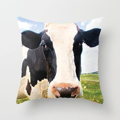 Cow throws, holy cow! @Paisley Prints Online Society6 page http://society6.com/product/dairy-cow-yx2_pillow#25=193&18=126