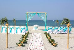 6 Sea Stars Aqua beach wedding on Siesta beach florida
