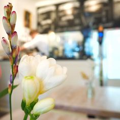 Café Stockholm #hamburg #winterhude #worldsbestcoffee #streetphotography #ilovecoffee #shootwithcamerasnotwithguns #urban #urbanromantix #welovehh #040 #goodtimes #igershamburg #enjoy #weshowhh #cafe  #wirsindhamburg #ahoi #wearehamburg #nofilter #heimatstadt #hhexp #imxplorer #live #coffee #bestgermanypics #weshowhh #igershamburg www.porip.de