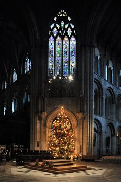 Nikon pce Christmas tree in Ely Cathedral, England.
