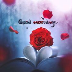 Good Morning Good Night, Morning Wish, Sri Ram Image, Good Morning Images Flowers, Good Night Greetings, Heart Gif, Indian Paintings, Happy Sunday, Neon Signs