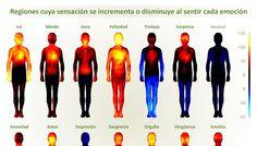 Mapa-corporal-emociones