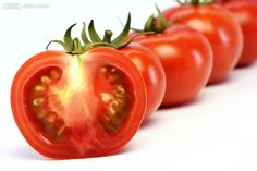 Red Princess Big Red Tomato Seeds 100 Seeds green vegetable seed