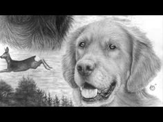 -How to draw a realistic dog nose with graphite - Drawing tutorial- Hi guys! In this tutorial i am explaining how to draw a realistic dog nose with graphite . How To Draw Fur, In The Zoo, Dog Nose, Graphite Drawings, Realistic Drawings, Art Tutorials, Painting Tutorials, Painting Techniques, Animal Drawings