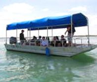 ***Dolphin and Manatee Eco Tours   Water Sports in Daytona, Florida - Call 386-405-3445   Ponce Inlet Watersports