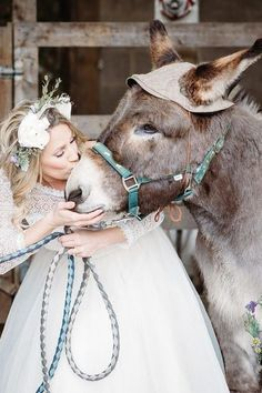 I'm sure we can all agree, that one of the biggest assets to The Wellbeing Farm is our animals! It's always priceless to see the looks on peoples faces when our animal handlers bring them out to say hello to all your guests, all dressed up and ready to take selfies! Cat Wedding, Wedding Wishes, Summer Wedding, Dream Wedding, Event Venues, Wedding Venues, Wedding Colors, Wedding Styles, Wedding Photographer London