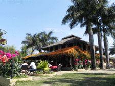 KC's Restaurant & Bar | Probably the Best Bar in Sauraha, Chitwan National Park