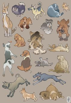49 Ideas For Dogs Illustration Cartoon Design Reference Cartoon Dog, Cartoon Drawings, Art Drawings, Animal Sketches, Animal Drawings, Art Sketches, Art And Illustration, Animal Illustrations, Animation