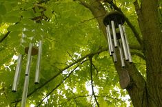 Wind chimes can add music and visual interest to your backyard retreat. Making your own wind chimes is a relatively simple task that begins with calculating the appropriate length of pipe for each desired note. Make Wind Chimes, Wind Chimes Sound, Deep Tone Wind Chimes, Sun Catchers, Timmy Time, Pentatonic Scale, Feng Shui, Garden Crafts, Garden Projects