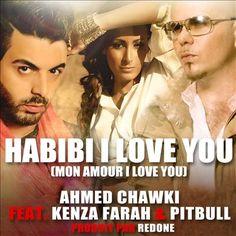 Habibi I Love You lyrics-Pitbull