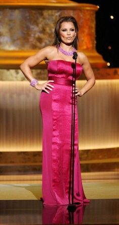 Who made Vanessa Williams' pink strapless dress that she wore to the 2009 Daytime Emmy Awards? Lynn Williams, Vanessa Williams, Jennifer Hudson, Jennifer Connelly, Miss America Winners, Ugly Betty, Denise Richards, Nicole Richie, Pippa Middleton
