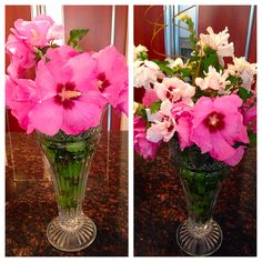 Flowers from around the house!
