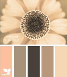 colour scheme - beige, blush and browns