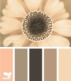 colour scheme - beige, blush and browns