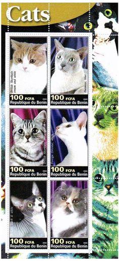 Timbres pour collectionneurs - chats domestiques - 6 état neuf timbres comportant chats - timbres de nature Idéal pour la collecte - superbe état - Mint NH