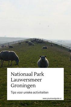 Wat te doen in Nationaal Park Lauwersmeer? Tips voor unieke activiteiten in Nationaal Park Lauwersmeer in Groningen. #groningen #lauwersmeer #nederland