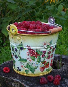 Bucketful Of Fresh Raspberries...