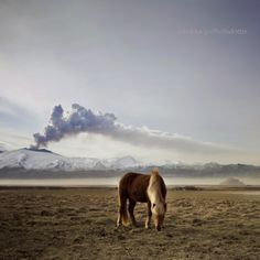 Wundervolles Foto vom Vulkanausbruch im wunderschönen Island - spiegelt herrlich die Kontraste des Landes wider.
