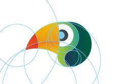 Conheça o projeto gráfico do IBRA - Instituto Brasil Ambiental   Clube do Design