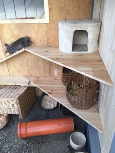 Outdoor enclosure photos The Effective Pictures We Offer You About Exotic pets funny A quality picture can tell you many Rabbit Cages, Rabbit Shed, Bunny Cages, Pet Rabbit, Bunny Sheds, Chinchilla, Pet Wolf, Rabbit Enclosure, Bunny Room