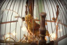 Antieke vogelkooi lantaarn 26140 bij Van der Lans Antiek. Meer antieke lampen op www.lans60antiek.com