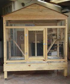 Bird Cage Design, Diy Bird Cage, Cat Cages, Bird Cages, Iguana Care, Pigeon Loft Design, Quail Coop, Snake Enclosure, Bird Aviary