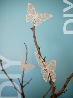 Butterflies diy