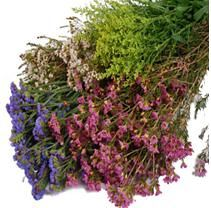 Search for assorted greenery - Sam's Club Flower Food, Flower Ideas, Mother Nature, Beautiful Flowers, Wedding Flowers, Wedding Greenery, Wedding Bouquets, Bloom, Sam's Club