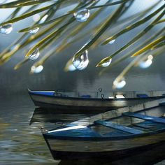 Sometimes rain should just be enjoyed, under the shelter of a tree, looking out on boats on the river