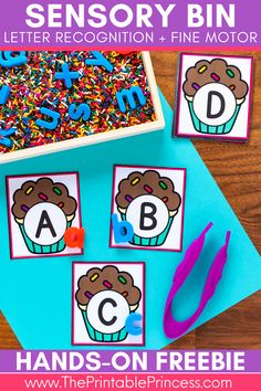 Sensory development is an essential part of childhood development. Introducing children to letters at an early age is equally important. Combine these two skills and create an activity that is not only fun but will help develop crucial early literacy skills. Check out this FREE Alphabet Sensory Bin activity! Perfect for preschool, pre-k, and kindergarten. #teachertips #kindergarten #sensorybins #kindergartenclassroom #alphabetactivities #kindergartenliteracy