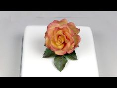 How I Make Rose Out Of Fondant with circle cutters and spoon. - YouTube