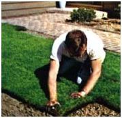 turf installation - lots of great tips and explanation of soil type &PH, prep work, care & maintenance, etc