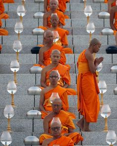 * Buddhist monks celebrate the Makha Bucha festival – in pictures * A Buddhist monk takes his place at the temple.