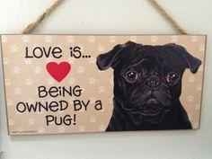 ♡Love my pugs!!♡