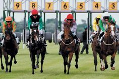 Buy your tickets & hospitality packages, find out more information and view all of the exciting horse racing fixtures and events at Great Yarmouth racecourse. Great Yarmouth, Horse Racing, Horses, Animals, Ideas, Animales, Animaux, Animal, Animais