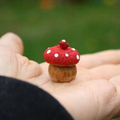 Enchanted Acorn Toadstools - a tutorial for a fun fall craft.