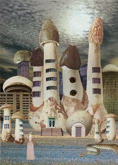 Seana Gavin's Mushroom City