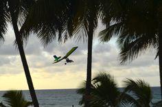Volando bajito en Arecibo. Foto José E. Maldonado / www.miprv.com